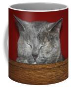 Sleeping Pixie Coffee Mug