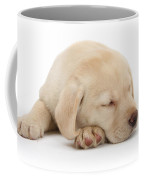 Sleepy Labrador Pup Coffee Mug