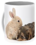 Sleepy Yorkipoo Pup With Baby Sandy Coffee Mug