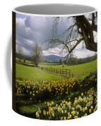 Slievenamon, Ardsallagh, Co Tipperary Coffee Mug