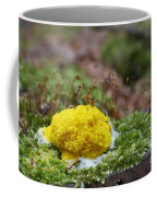 Slime Mould Coffee Mug