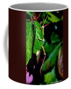 Slip Sliding Away Coffee Mug