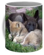 Slumber Buddies Coffee Mug