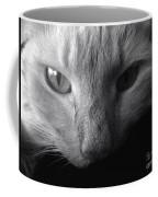 Sly Coffee Mug