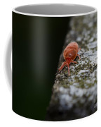 Small Red Insect Coffee Mug