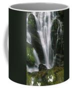 Small Waterfall Near The Milford Track Coffee Mug