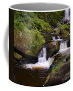 Small Waterfalls Coffee Mug