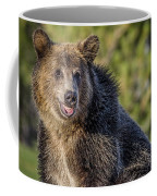 Smiling Grizzly Coffee Mug