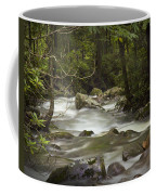 Smokey Mountain Stream No.326 Coffee Mug