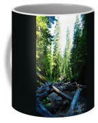 Snag On Iron Creek Coffee Mug