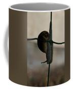 Snail On The Fence Coffee Mug