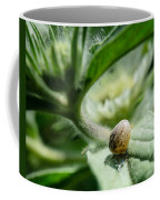 Snail On The Leaf Coffee Mug