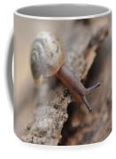 Snail's Tale Coffee Mug