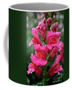 Snapdragon  Coffee Mug