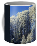 Snow Covered Trees In A Forest, County Coffee Mug