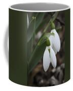 Snowdrops 2012 Coffee Mug