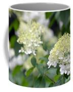 Snowflake Hydrangea 2 Coffee Mug