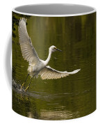 Snowy Egret Fishing In Florida Coffee Mug