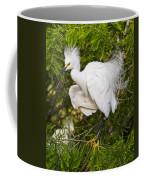 Snowy Egret In Breeding Plumage Coffee Mug