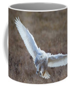 Snowy Flight Coffee Mug