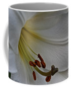 Snowy Lily Coffee Mug