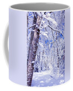 Snowy Path Coffee Mug by Rob Travis