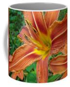 Soaking Up The Sun - Orange Daylily Coffee Mug