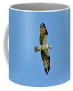 Soaring Above Coffee Mug