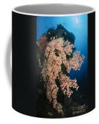 Soft Coral On The Liberty Wreck, Bali Coffee Mug