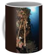 Soft Coral Reef, Indonesia Coffee Mug