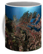 Soft Coral Reef Seascape, Indonesia Coffee Mug