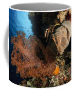 Soft Coral Seascape, Indonesia Coffee Mug
