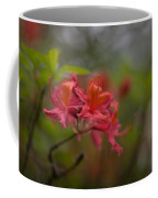 Soft Red Rhodies Coffee Mug