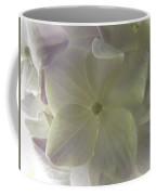 Softly Lit Hygrangea Bloom Coffee Mug
