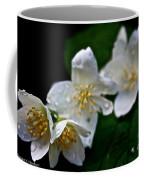 Softly Weeping Skies Coffee Mug
