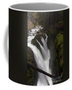 Sol Duc Falls Coffee Mug