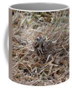 Song Sparrow Coffee Mug