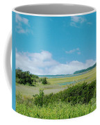 South Carolina Coastal Marsh Coffee Mug