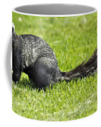 Southern Fox Squirrel Coffee Mug by Phill Doherty