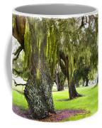 Spanish Moss At Jekyll Island Coffee Mug