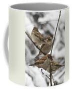 Sparows 3629 Coffee Mug