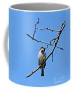 Sparrow On The Branch Coffee Mug