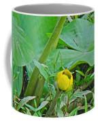 Spatterdock Wild Yellow Water Lily - Nuphar Lutea Coffee Mug