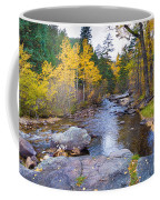 Special Place In The Woods  Coffee Mug