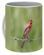 Speckled In Red Coffee Mug