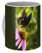 Spicebush Swallowtail Butterfly And Coneflower Coffee Mug