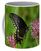 Spicebush Swallowtail Din039 Coffee Mug