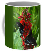 Spicebush Swallowtails Visiting Cardinal Lobelia Din041 Coffee Mug