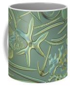 Spicules Of Sponges & Sea Cucumber Lm Coffee Mug