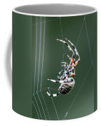 Spider - The Spinner Coffee Mug
